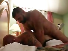 daddy bonks in cheap motel